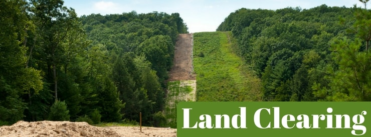 Land Clearing - Tree Removal & Tree Trimming - Albia, Centerville