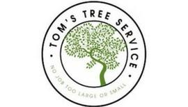 Tree Removal & Tree Trimming – Albia, Centerville, Des Moines, Fairfield, Mt. Pleasant, Ottumwa, & Oskaloosa
