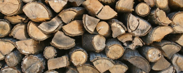 Dangers of Firewood Stacks